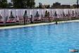 Bordura-piscina-Arvore-01