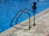 Bordura-piscina-Arvore-06